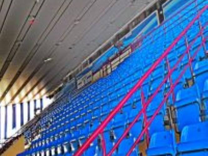 Большая арена Дворца Спорта