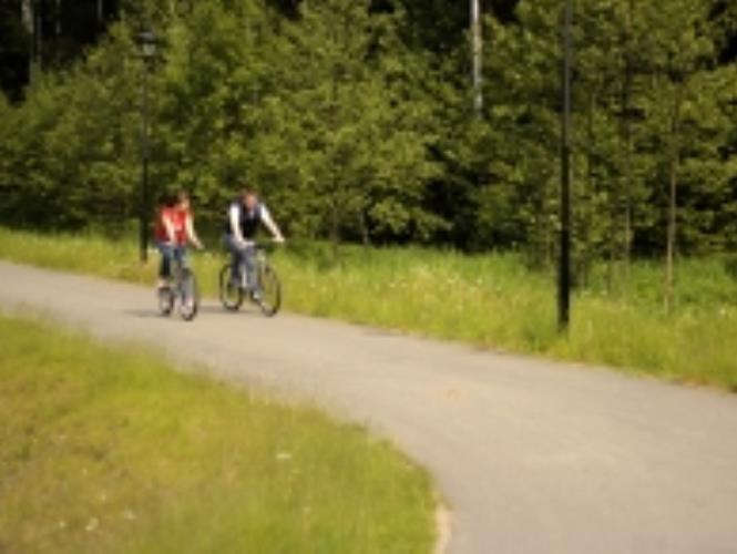 Велопрокат