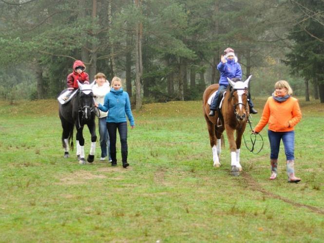 Прогулка на лошадках