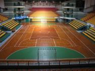 Центральная арена