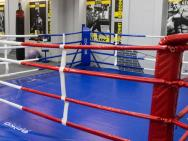 Зона бокса